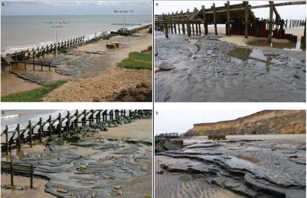 Zbulohen gjurmët njerzore  800 mijë vjecare në Angli 13021-1050