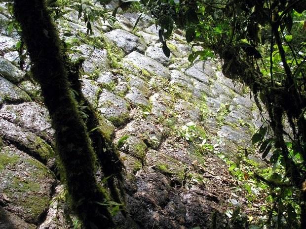 Ecuador: un gruppo di esploratori ha trovato una perduta 'città dei giganti'?
